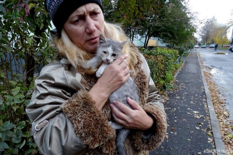 В Слуцке котят заживо замуровали в стене дома. Две женщины голыми руками и ножом разобрали кирпичную кладку, чтобы спасти их