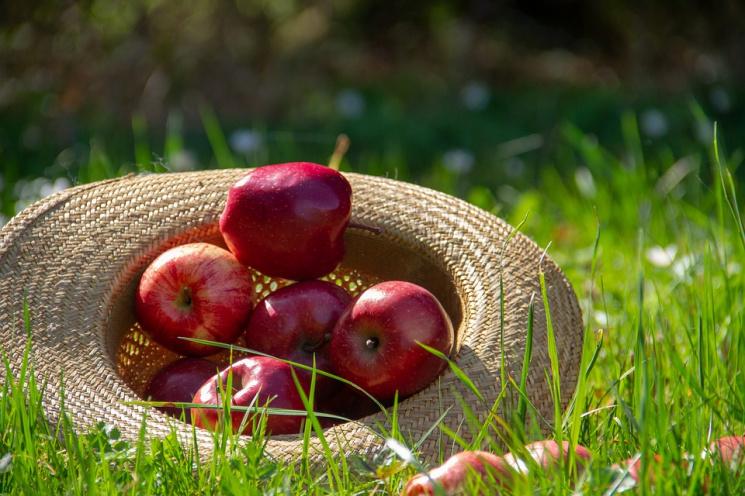 Христиане восточного обряда празднуют Яблочный Спас