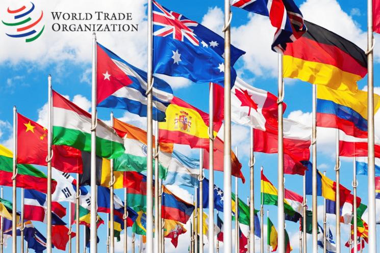 Долгая дорога в ВТО: не застрянет ли Беларусь на полпути?