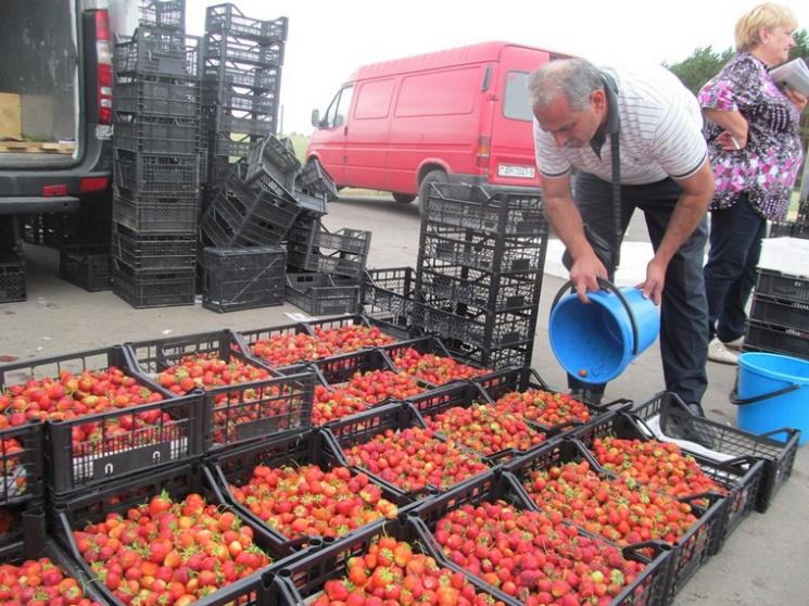 Лукашенко поручил закупиться клубникой