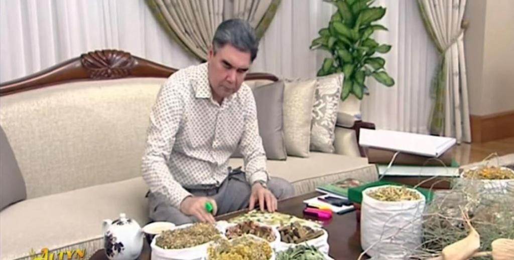 Травка спасет мир? В Туркменистане запретили слово «коронавирус», президент советует жечь траву